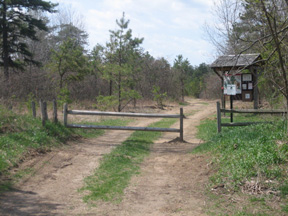 The Trailhead At The Dead End Of Pitch Pine Road