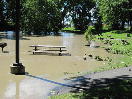 Island Creek Park Monday Morning After Hurricane Irene