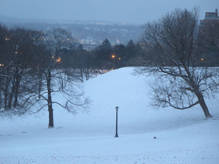 Martinsville Hill, Lincoln Park January Light Snow At Dawn