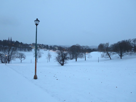Lampost, Dawn, January, Snow, Lincoln Park