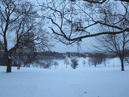 Lincoln Park, Snow, January, Dawn