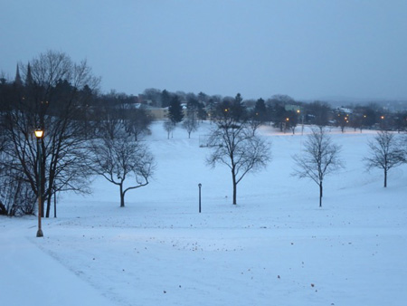 More Bleak Landscape, Lincoln Park In January, Snow At Dawn