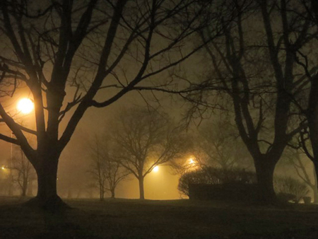 Lincoln Park, Late Autumn, Fog, Night