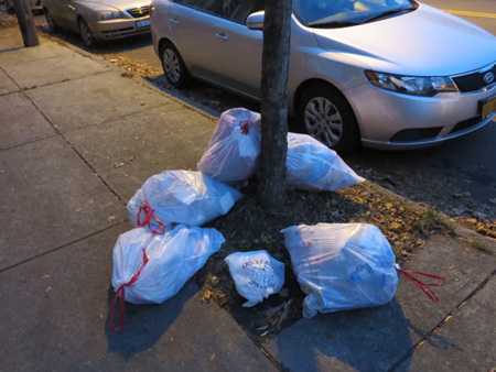 Bags Of Garbage On Morton Avenue Waiting For Pickup