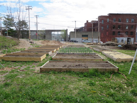 Some Of The Raised Bed Plots