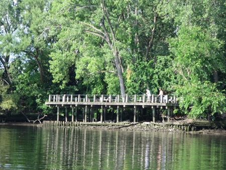 The Fishing Deck At Island Creek Park