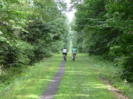 The Rail Trail Becomes One Rut As You Head Away From Vorheesville