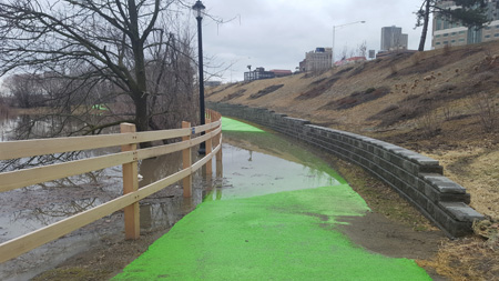 The Newly Refurbished Bike Path In Albany At The Beginning Of April (Photo: ABC)