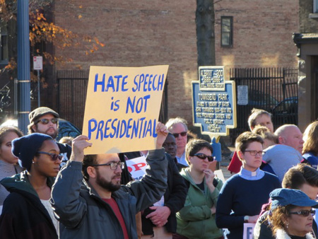 Patriotic Americans Demonstrate In Albany NY, November 2016