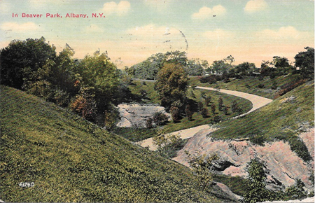 Postcard Marked 1911 Looking Down Into The Ravine In Lincoln Park (Then Called Beaver Park)