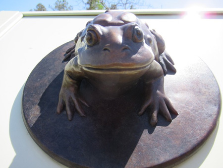 Brass Frog, Pine Bush Discovery Center, Albany